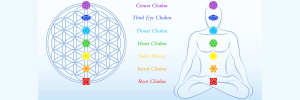 Flower of life and meditating man, both with symbols of the seven main